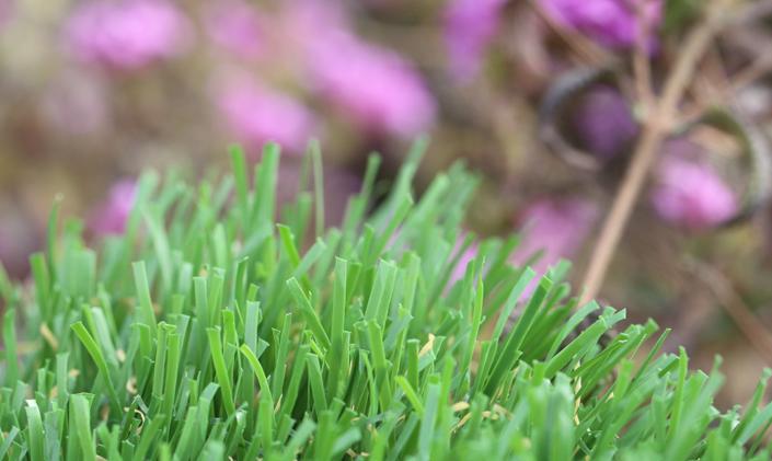 Artificial Grass Emerald-92 Stemgrass Artificial Grass Philadelphia Pennsylvania