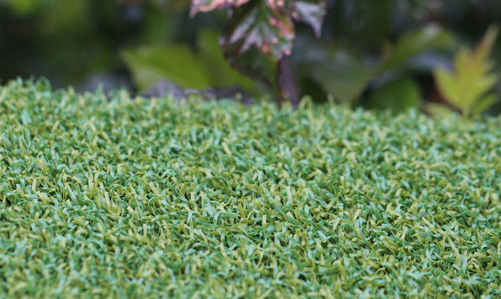 Artificial Grass Putt-46 BiColor Artificial Grass Philadelphia Pennsylvania