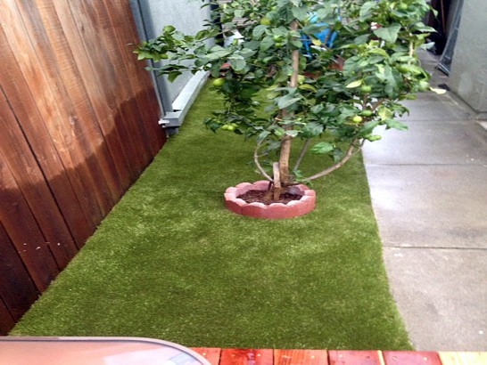 Artificial Grass Carpet Oreland, Pennsylvania Landscaping Business, Backyard Landscaping Ideas artificial grass