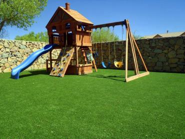 Artificial Grass Photos: Artificial Grass Carpet Refton, Pennsylvania Lacrosse Playground, Backyard Designs
