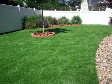 Artificial Grass Photos: Artificial Grass Carpet West Conshohocken, Pennsylvania Backyard Playground, Backyards