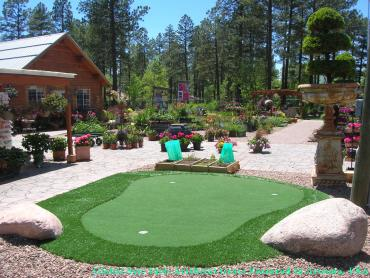 Artificial Grass Photos: Artificial Grass Tioga, Pennsylvania Putting Green, Backyard Landscaping Ideas