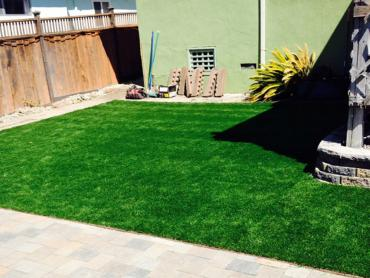 Artificial Grass Photos: Artificial Lawn Lititz, Pennsylvania Backyard Playground, Backyard Landscaping Ideas