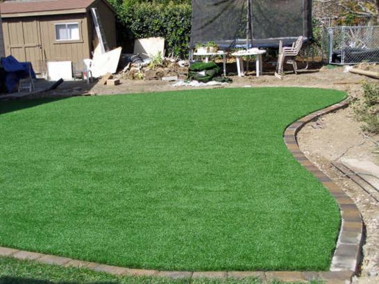 Artificial Grass Photos: Artificial Lawn Plains, Pennsylvania Rooftop, Small Backyard Ideas
