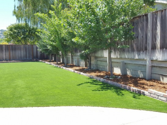 Artificial Lawn Pottstown, Pennsylvania Home And Garden, Small Backyard Ideas artificial grass