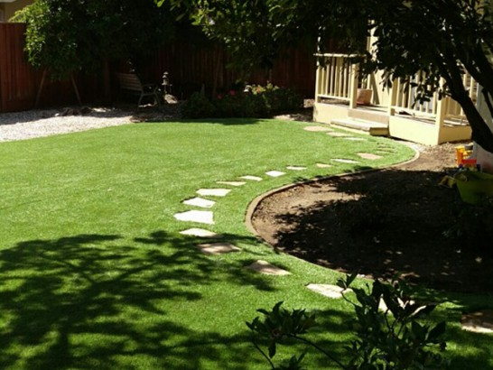 Artificial Lawn Upland, Pennsylvania Landscaping Business, Backyard Landscaping artificial grass
