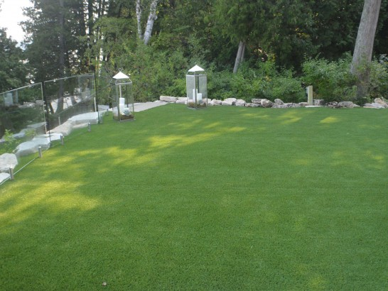 Artificial Grass Photos: Artificial Turf Bedminster, Pennsylvania Landscape Ideas, Backyard Landscaping
