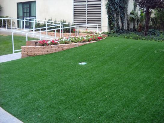 Artificial Grass Photos: Artificial Turf Cost Lower Allen, Pennsylvania Backyard Putting Green, Front Yard Landscaping