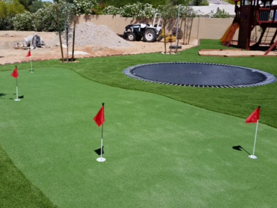 Artificial Grass Photos: Artificial Turf Green Lane, Pennsylvania Diy Putting Green, Backyard Landscaping