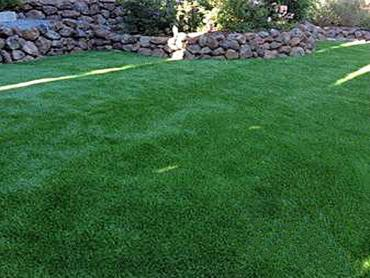 Artificial Grass Photos: Artificial Turf Installation Cherryville, Pennsylvania Grass For Dogs, Backyard Ideas