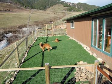 Artificial Grass Photos: Artificial Turf Installation Chester Heights, Pennsylvania Fake Grass For Dogs, Backyards