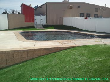 Artificial Turf Installation Norwood, Pennsylvania Lawn And Garden, Natural Swimming Pools artificial grass