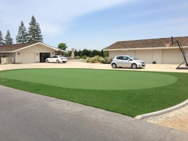 Artificial Grass Photos: Artificial Turf Mountain Top, Pennsylvania Putting Green, Small Front Yard Landscaping