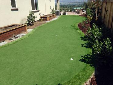 Artificial Grass Photos: Fake Grass Carpet Coplay, Pennsylvania How To Build A Putting Green, Backyard Makeover