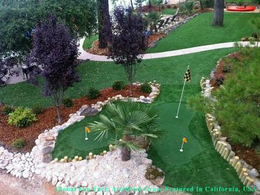 Fake Grass Carpet Philadelphia, Pennsylvania Putting Greens, Beautiful Backyards artificial grass