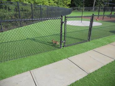 Artificial Grass Photos: Fake Grass Carpet Stony Creek Mills, Pennsylvania Backyard Playground, Parks