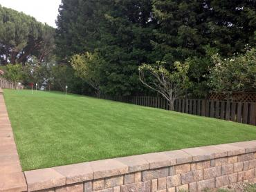 Artificial Grass Photos: Fake Grass Minersville, Pennsylvania Putting Greens, Backyard Landscaping Ideas