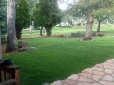 Artificial Grass Photos: Fake Lawn New Jerusalem, Pennsylvania Landscaping, Front Yard Design