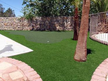 Artificial Grass Photos: Fake Turf Lehighton, Pennsylvania Putting Green Carpet, Backyard Designs