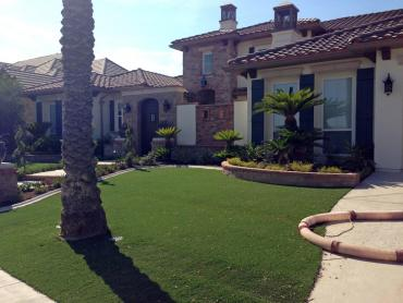 Artificial Grass Photos: Fake Turf Spinnerstown, Pennsylvania Landscape Photos, Front Yard Landscape Ideas