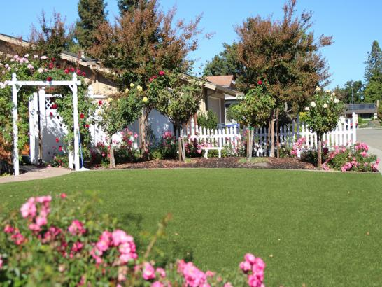 Artificial Grass Photos: Faux Grass Fort Indiantown Gap, Pennsylvania Home And Garden, Front Yard Ideas