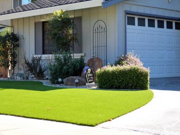Artificial Grass Photos: Faux Grass Mount Carbon, Pennsylvania Garden Ideas, Front Yard Landscape Ideas