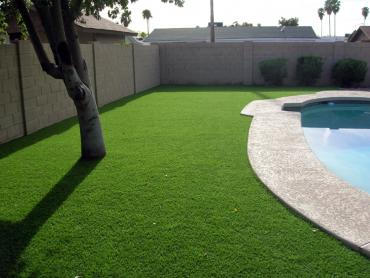 Artificial Grass Photos: Grass Carpet Mountville, Pennsylvania Landscape Photos, Backyard Ideas