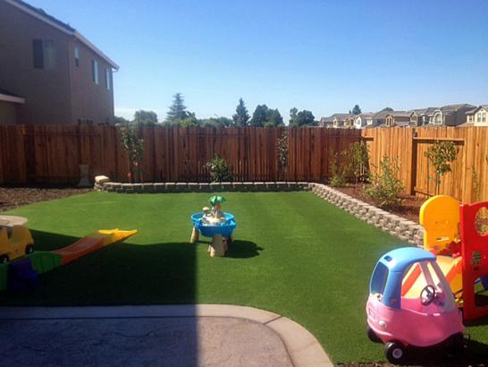 Artificial Grass Photos: Grass Carpet Oberlin, Pennsylvania Kids Indoor Playground, Backyard