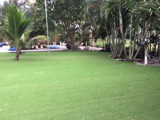 Artificial Grass Photos: Grass Carpet Schwenksville, Pennsylvania Backyard Playground, Commercial Landscape