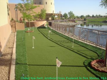 Grass Installation Yeadon, Pennsylvania Backyard Putting Green, Backyard Makeover artificial grass