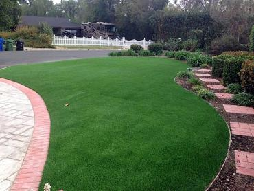 Artificial Grass Photos: Grass Turf Laureldale, Pennsylvania Lawn And Garden, Small Front Yard Landscaping
