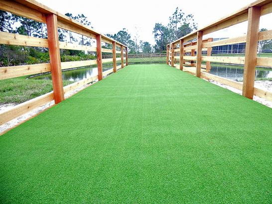 Artificial Grass Photos: Green Lawn Heckscherville, Pennsylvania Dog Pound, Commercial Landscape