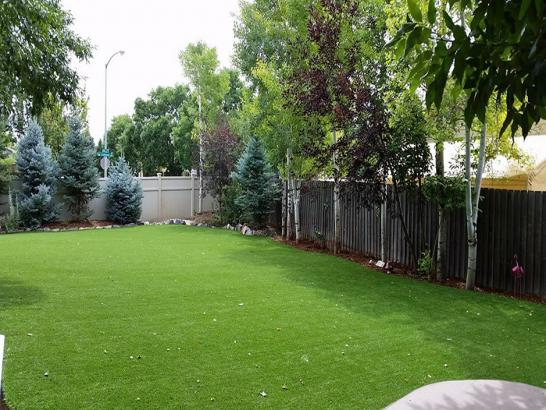 Artificial Grass Photos: How To Install Artificial Grass Tioga, Pennsylvania Dog Hospital, Backyard Landscape Ideas