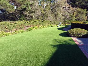 Artificial Grass Photos: Installing Artificial Grass Topton, Pennsylvania Landscaping, Small Front Yard Landscaping