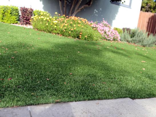 Artificial Grass Photos: Lawn Services Sugar Notch, Pennsylvania Landscape Design, Small Front Yard Landscaping
