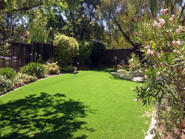 Artificial Grass Photos: Lawn Services Woodbourne, Pennsylvania Roof Top, Backyard Design