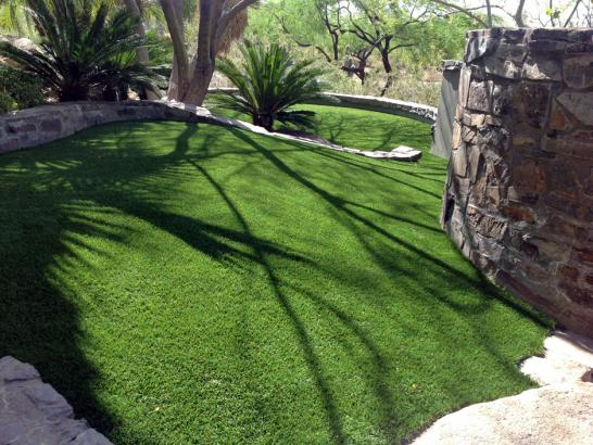 Artificial Grass Photos: Outdoor Carpet Kelayres, Pennsylvania Landscape Ideas