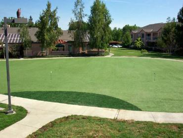 Artificial Grass Photos: Plastic Grass Bowmanstown, Pennsylvania Putting Green Grass, Commercial Landscape