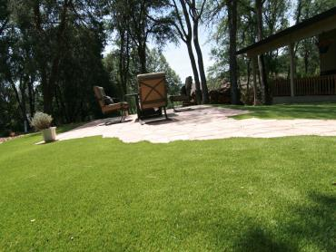 Artificial Grass Photos: Plastic Grass Gap, Pennsylvania Design Ideas, Backyard Ideas