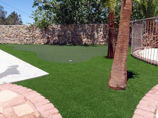 Artificial Grass Photos: Plastic Grass Hemlock Farms, Pennsylvania Outdoor Putting Green, Backyard Design