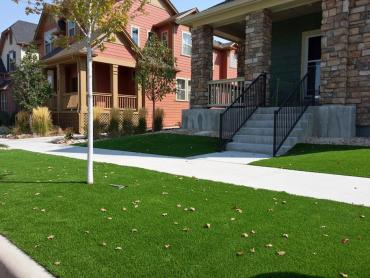 Plastic Grass Rutledge, Pennsylvania Design Ideas, Landscaping Ideas For Front Yard artificial grass