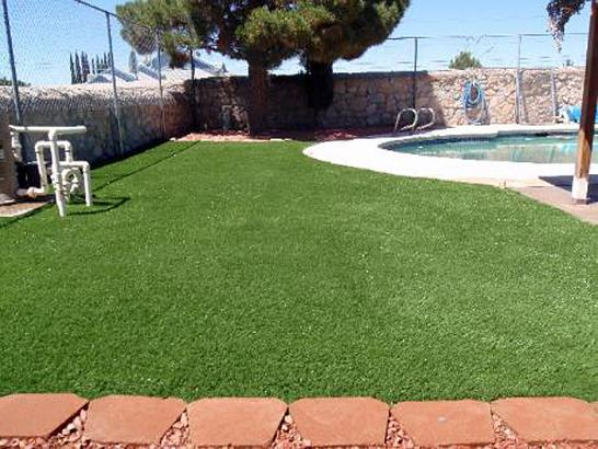 Artificial Grass Photos: Plastic Grass Warrior Run, Pennsylvania Cat Grass, Swimming Pools