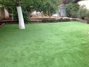 Artificial Grass Photos: Synthetic Grass Cost Cornwall, Pennsylvania City Landscape, Backyard Garden Ideas