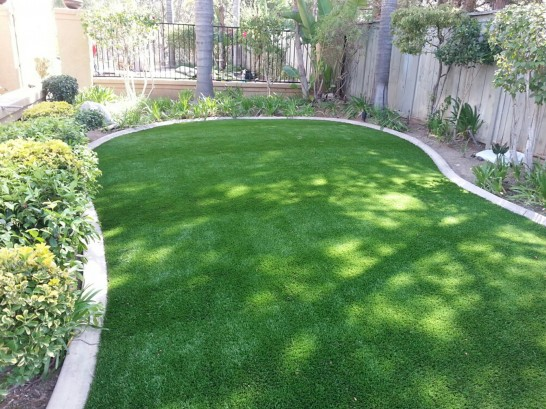 Artificial Grass Photos: Synthetic Grass Cost Newtown, Pennsylvania Landscaping Business