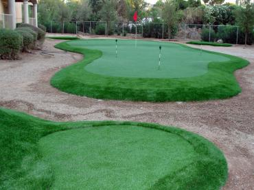 Synthetic Grass Swarthmore, Pennsylvania Best Indoor Putting Green, Backyard Landscaping Ideas artificial grass