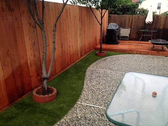 Synthetic Grass West Conshohocken, Pennsylvania Dog Grass, Small Backyard Ideas artificial grass