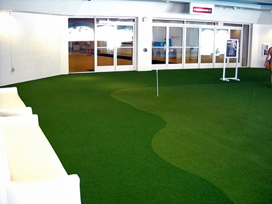 Artificial Grass Photos: Synthetic Grass Wilburton Number One, Pennsylvania Rooftop, Commercial Landscape