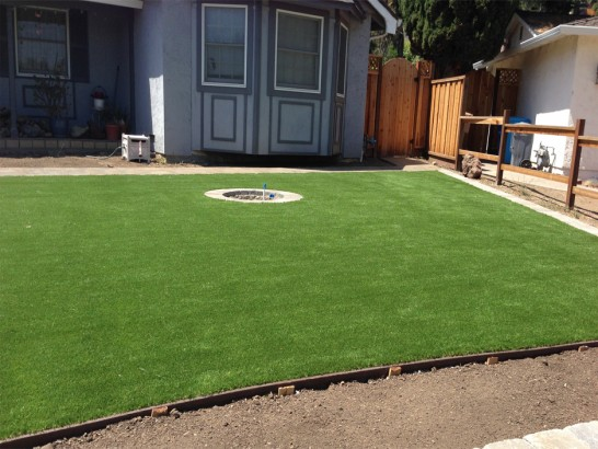 Artificial Grass Photos: Synthetic Lawn Croydon, Pennsylvania Landscape Photos, Backyard Garden Ideas