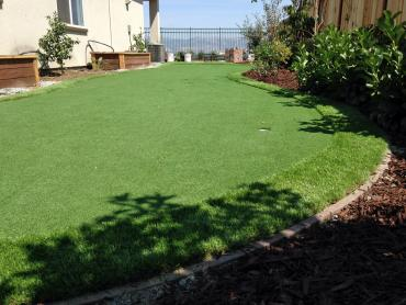 Artificial Grass Photos: Synthetic Lawn Red Hill, Pennsylvania Backyard Deck Ideas, Backyard Landscaping Ideas
