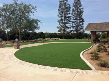 Artificial Grass Photos: Synthetic Lawn Saylorsburg, Pennsylvania Design Ideas, Front Yard Ideas